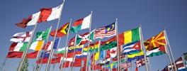 Vign_International_banner